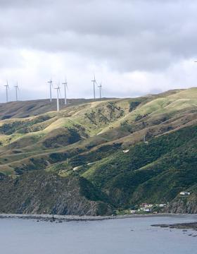 Wind farm in Makara Beach
