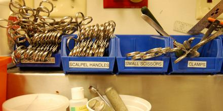 Still life of surgical tools