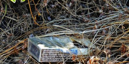 Image of decomposing cigarette packet