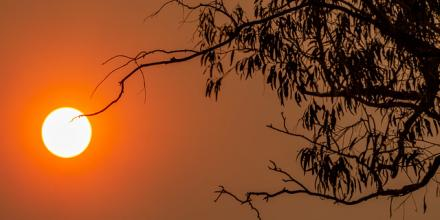 The Sun and the Sydney Fires_image by Alex Proimos_from www.flikr.com