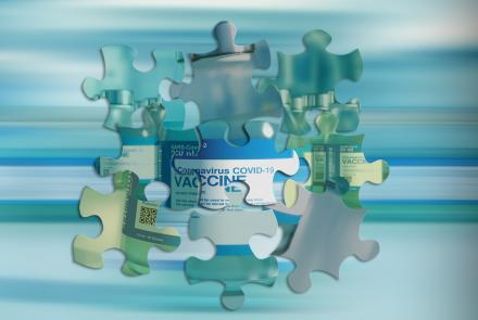 Vaccine formed by pieces of puzzle