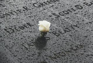 White rose on World Trade Centre memorial