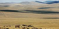 Photograph: Mongolian landscape