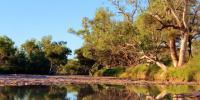 Image: 2020-04-03-Australian-outback by kalexander Pixabay under Pixabay Licence