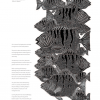 Image: Page 9 - Deconstructing aqua nullius: Reclaiming Aboriginal water rights and communal identity in Australia